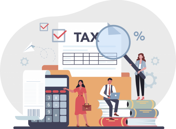 About Expat Tax Online