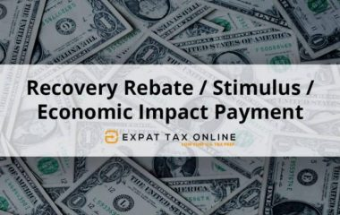 Economic-Impact-Payment